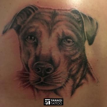 Tattoo_022